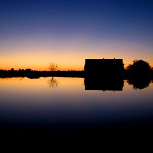 Sunset reflection of farm in pond, Amador county, California