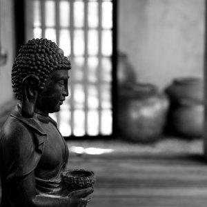 Buddha statue in peaceful surroundings, Sacramento, CA