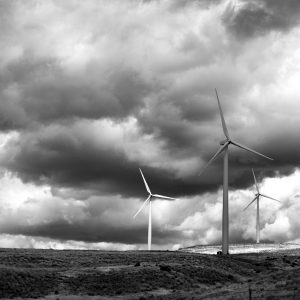Enormous wind turbines stand vigilant - ready for any sign of a breeze, ID