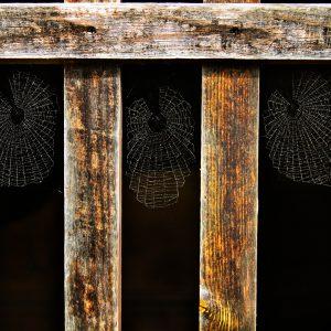 Spider webs on old door at Skansen open air museum, Stockholm, Sweden