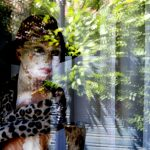 An old manikin within a shop window and plants reflected without, Edam, Netherlands