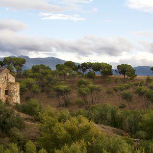 Rolling hills of La Mancha, Spain