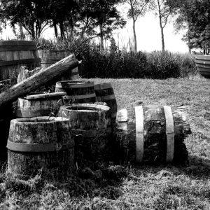 Old oak barrels just outside a cooper's shop in the open air museum, Zaanse Schans, Netherlands