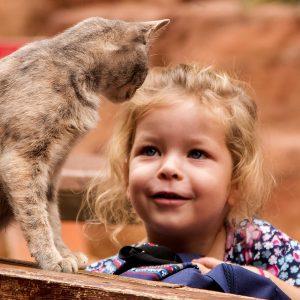 A curious resident cat investigates a young tourist, Petra Ruins, Jordan