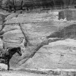A local curator, takes a rest from the sun to use his mobile phone, Petra Ruins, Jordan