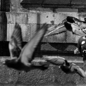 A local girl chases pigeons outside a church, Lima, Peru