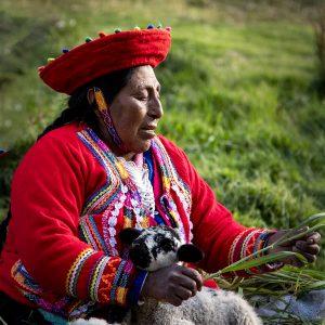 A local Quechuan artisan enjoys the comfort of a gentle lamb, Tambomachay, Peru