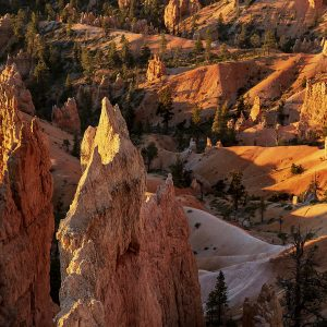 Sunlight peaks over the peaks revealing an intriguing peach-colored world, Bryce Canyon NP, Utah