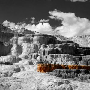 A just a peek of the deep vivid hues created by thermophilic microbes, Mammoth Hot Springs, Yellowstone NP, WY