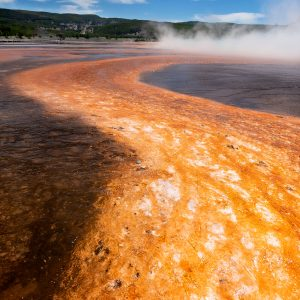 Brightly colored microbes create a river-like pattern within the Grand Prismatic Spring runoff, Yellowstone NP, WY